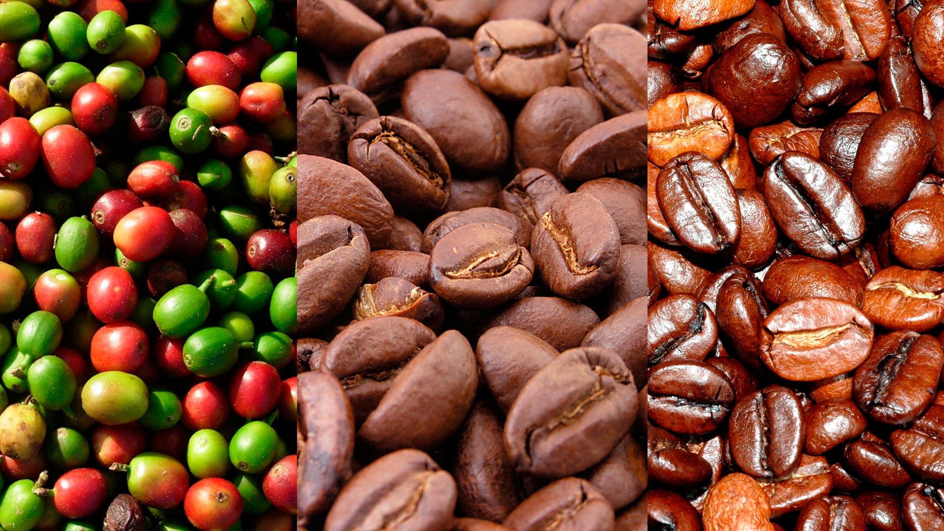 etapas cafe.jpg