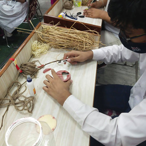 Bird Nest Making Campaign organised by Little Flowers Group of Schools