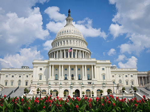 Private Tour from New York to Washington, DC. - $1,199.00