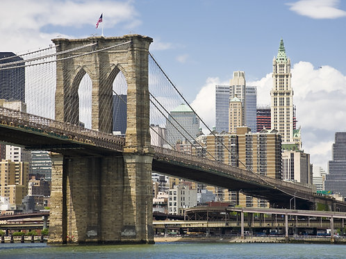 9-Hour Private Manhattan & Brooklyn Tour by Mini-Van - $1049.00