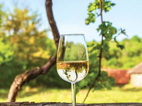 Glass-of-Wine-with-Vineyard-in-the-Background-Family-in-New-York-Tours