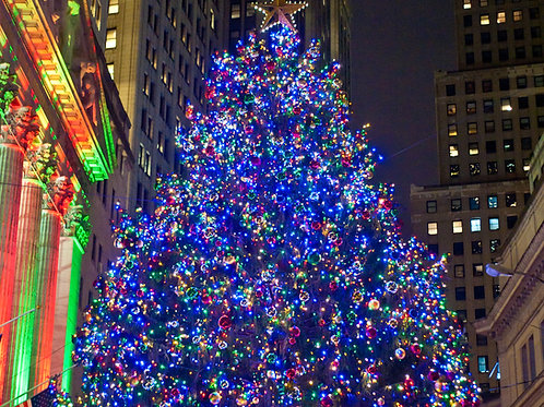 Christmas-Tree-at-the-New-York-Stock-Exchange-Family-in-New-York-Tours