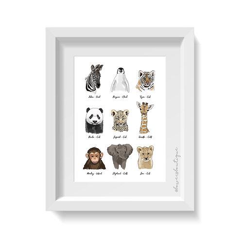 Baby Animals Print - 9 Illustrations