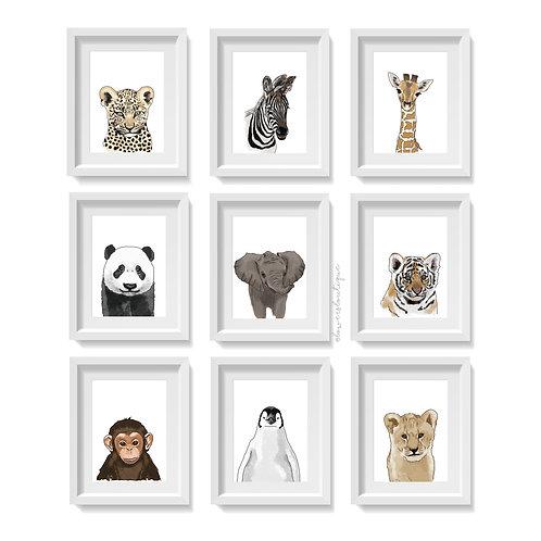 Baby Animal Illustration Prints