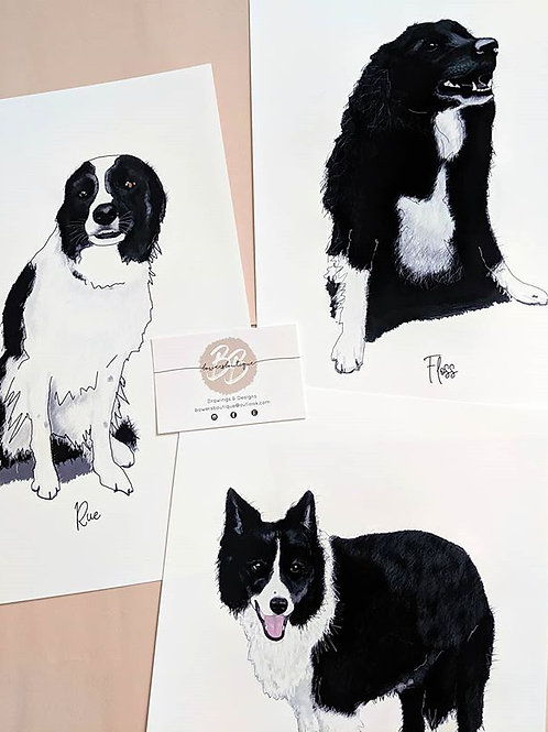 Quirky Pet Portrait Illustration