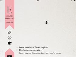5 décembre: E comme Éléphant