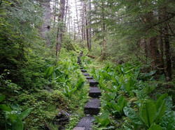 One of many hiking trails