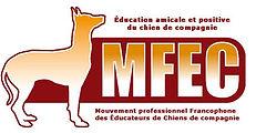 MFEC.jpg
