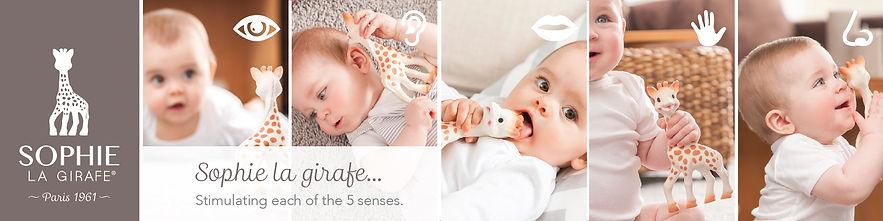 SLG website banner - HP_3. Five senses.j