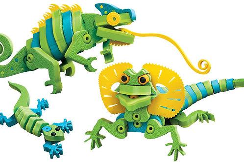 Lizards & Chameleons