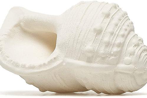 Karacola Whelk Shell