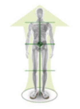 balanced-bioman1.jpg
