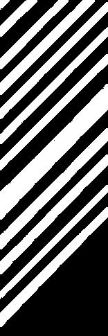 Fatlash_Pattern_white_corner-01.png