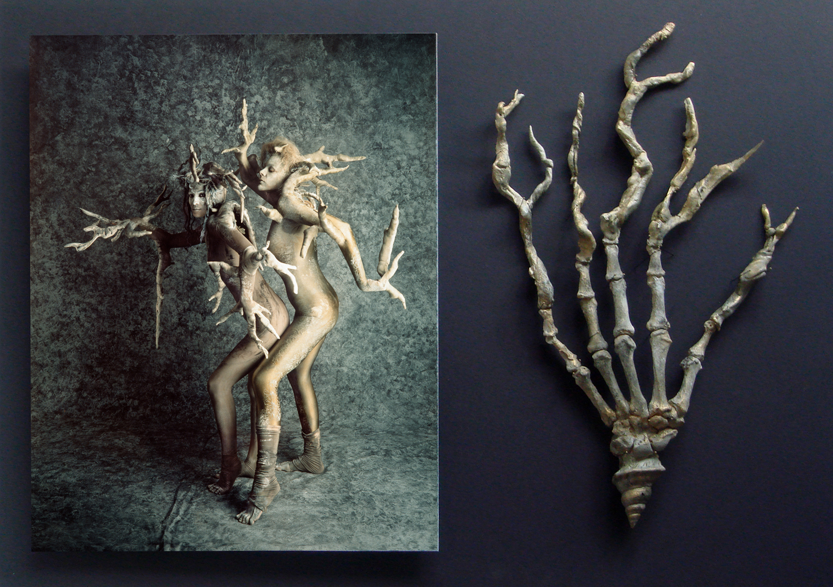 Tree hand skeleton
