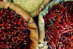 Especiarias-indianas-1