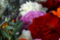 flores ervanaria 1.jpg