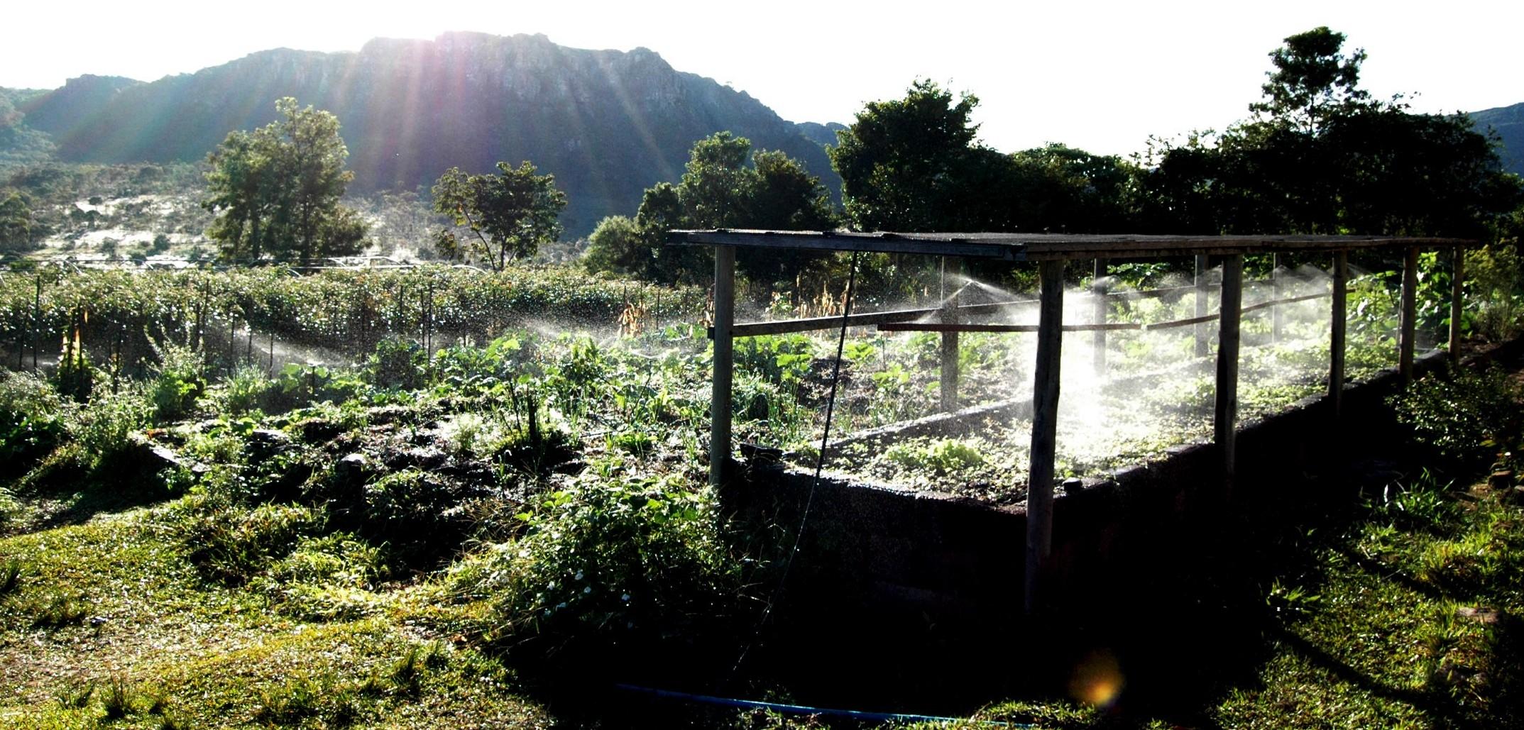 Irrigação Terra Mãe