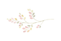 Floral Element Transparent.png