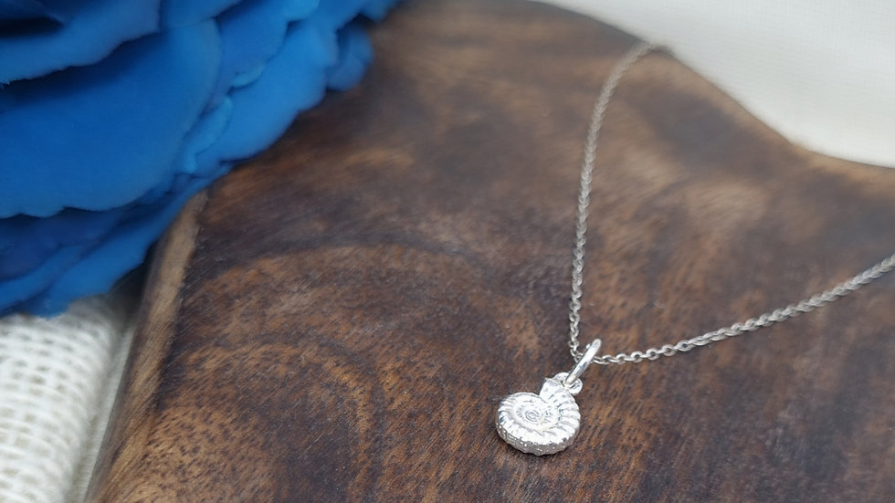 Sterling Silver Ammonite shell necklace