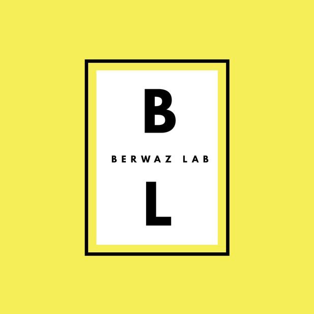 berwaz lab logo.jpg