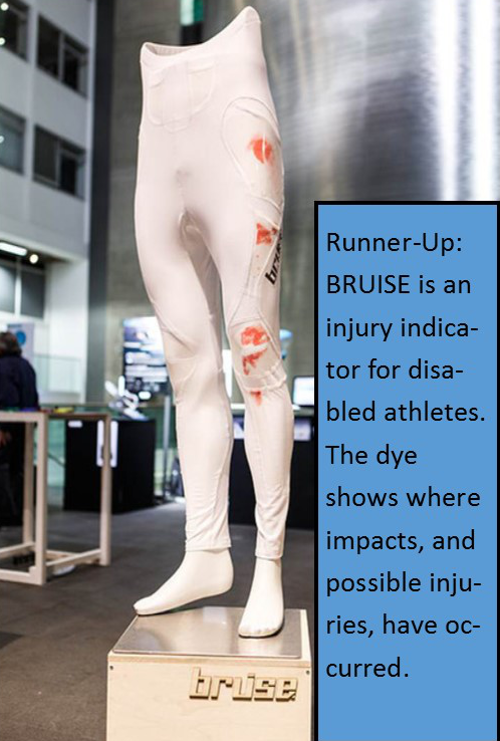 BRUISE with Text.png
