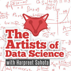 The Artists of Data Science Podcast Feature