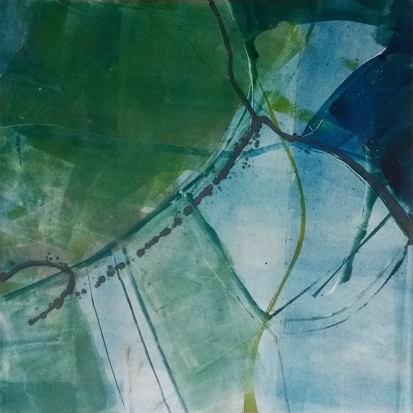 46 - oil based ink monoprint, 51 x 51 cm