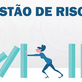 """""""EPPGG Ethel Capuano fala sobre gestão de riscos e inovação à Rede Governança Brasil"""""""