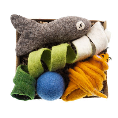 The Woolly Cat Toy Box