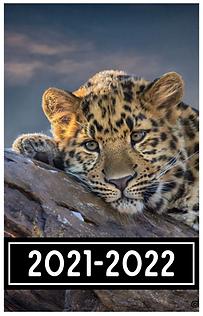 Schermafbeelding 2021-05-10 om 20.58.13.