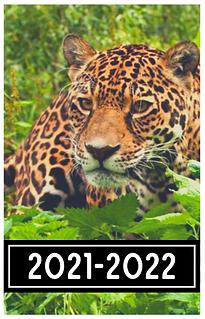 Schermafbeelding 2021-05-10 om 20.52.26.