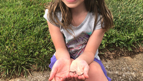 Quarantine Lessons from a 4-year-old Saving Worms