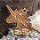Thumbnail: Personalized Unicorn Ornament