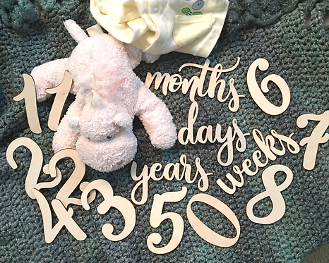 Wood Baby Monthly Milestone Photo Props