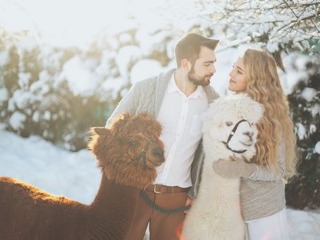 Winter Dates to Keep Your Relationship Hot