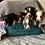 Thumbnail: View Previous Puppies