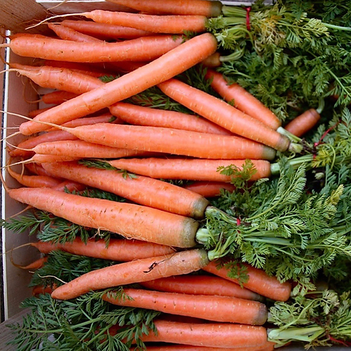 CARROT BUNCH 500g