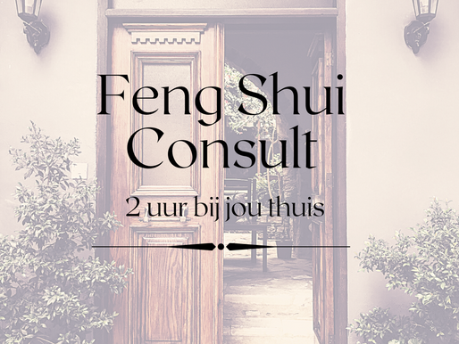 Feng Shui Consult