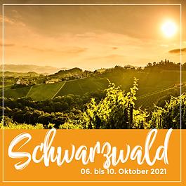210009_Postings_Schwarzwald.png