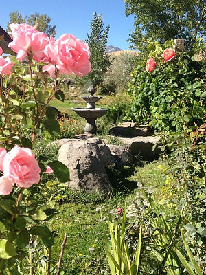 Grace-Field-Flower-Fountain.jpg