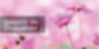 banner calendario 2018-03-03.png