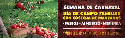 banners carnaval-cosecha de manzanas-02.