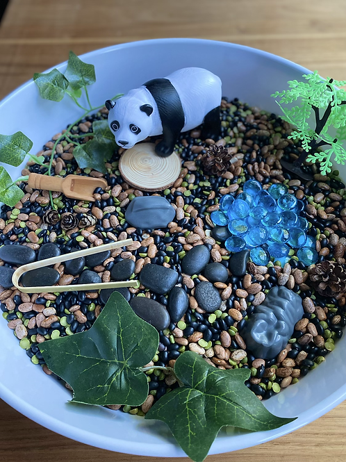 Panda Sensory Box