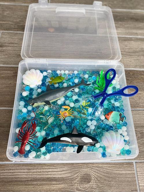 Ocean Water Bead Box