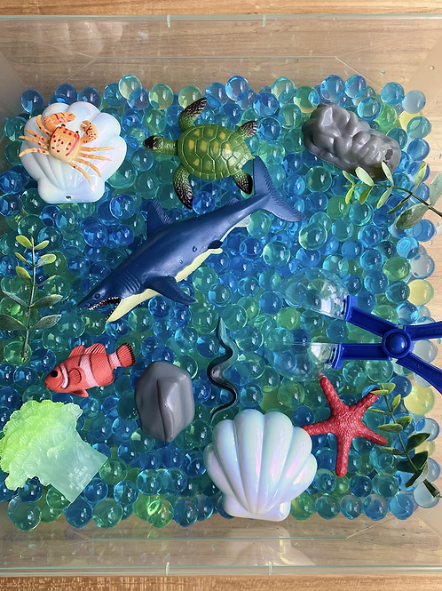 Ocean Waterbead Box