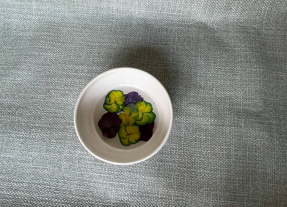 Pansy Floral Dish