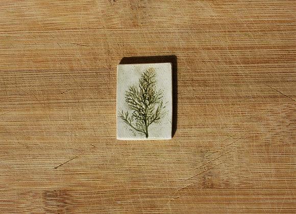 Asparagus Sprig Tile
