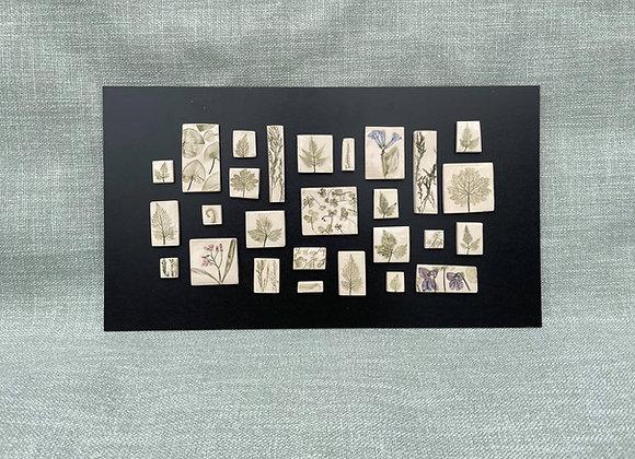 Framed Botanical Tiles No.4