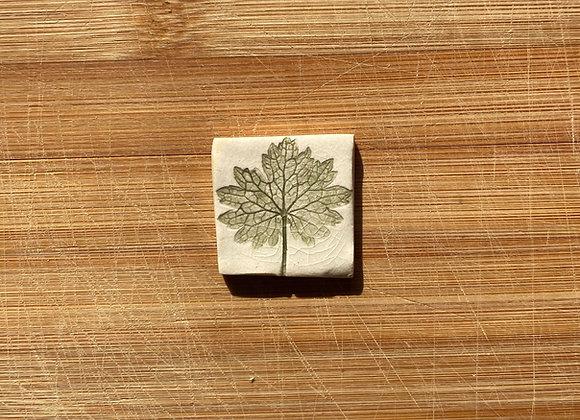 Geranium Leaf no. 2