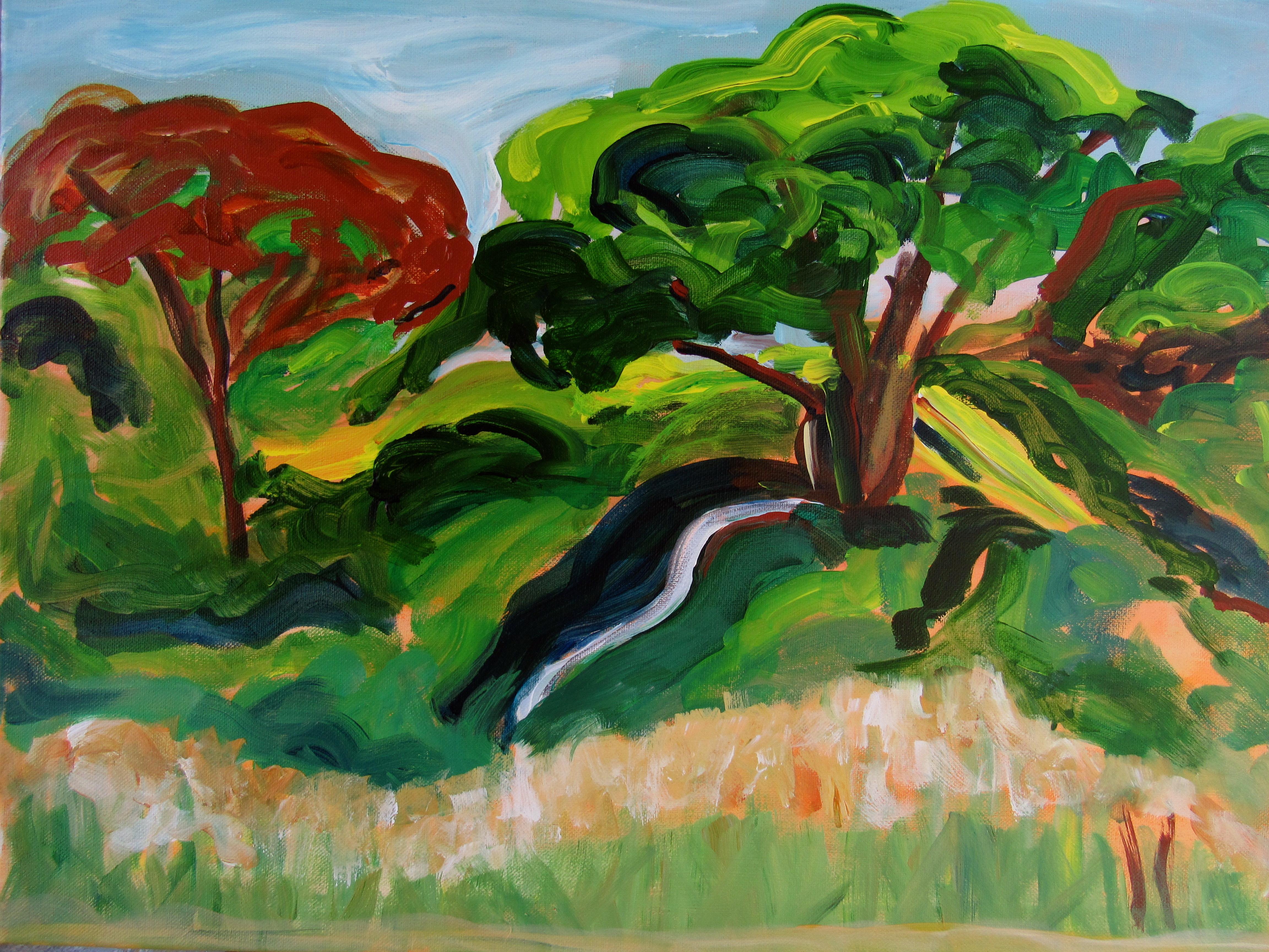 Serpentine Branch.jpg